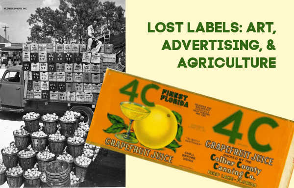 Banner with citrus label and image of truck with crates