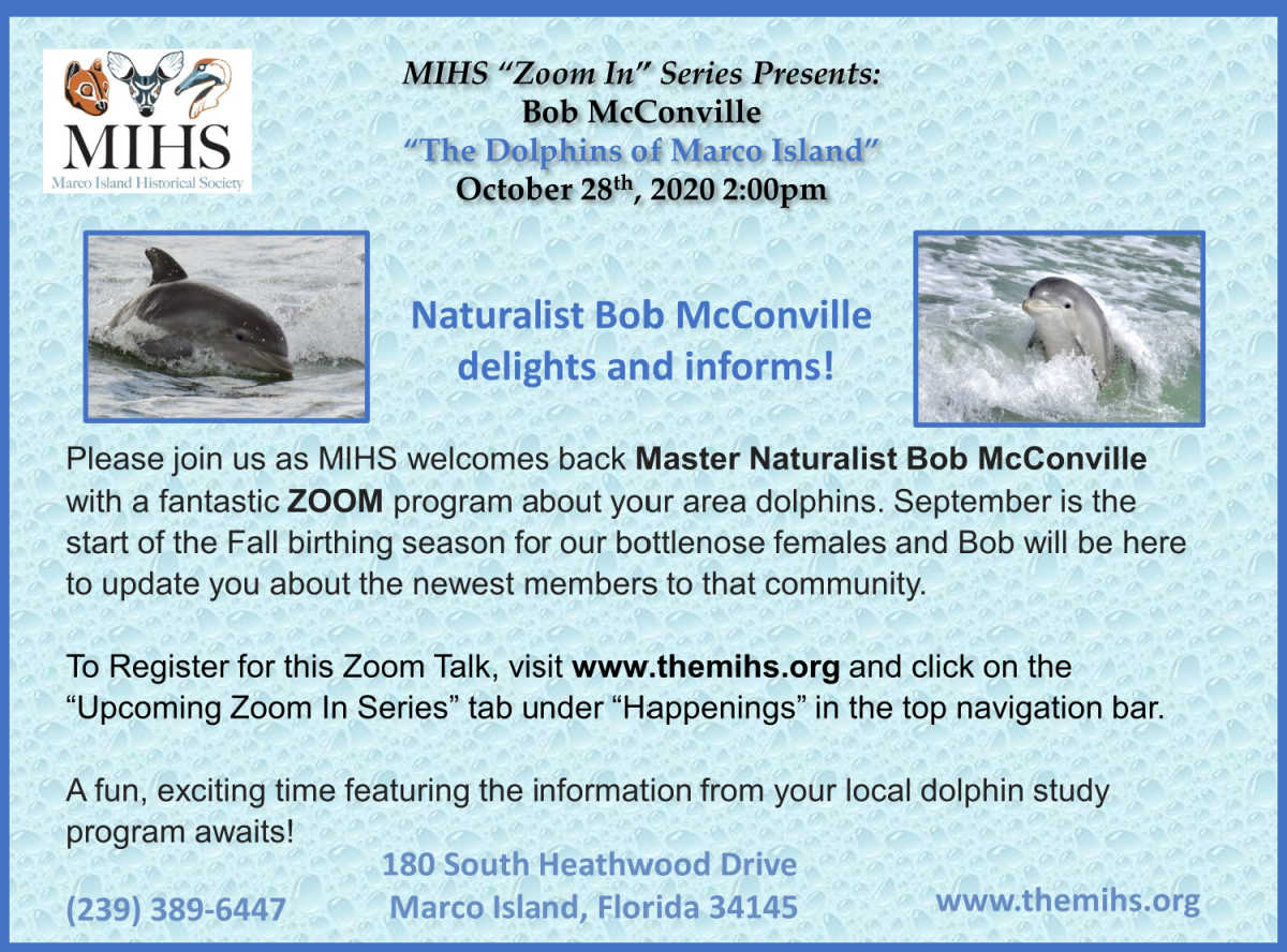 "MIHS ""Zoom In"" Series Presents Bob McConville ""The Dolphins of Marco Island"" October 28th, 2020 at 2pm. Naturalist Bob McConville delights and informs!"